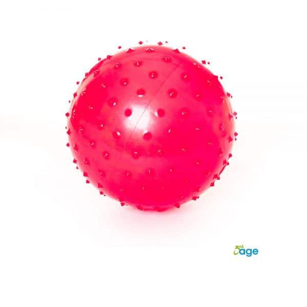 כדור פיזיו